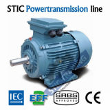 Motor AC de Alta Eficiência de EFF2 2 Pole de Ferro Fundido IEC