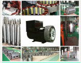 22 Kilowatt schwanzloser Wechselstrom-Exemplar Stamford Drehstromgenerator