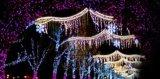 Handelsweihnachtslicht-und Bildschirmanzeige-künstliche Blumen-Lichter