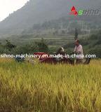 Pleine tête de coupeur alimentante automotrice de 1200mm mini moissonneuse de cartel de riz