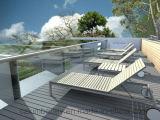 Decking sólido de la alta calidad WPC/suelo plástico del Decking de Flooring/WPC