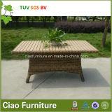 贅沢な屋外の家具のホテルの柳細工の庭の藤の表および椅子