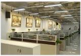 3 anni della garanzia P6 SMD del LED di schermo di visualizzazione dell'interno