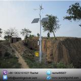 Gerador de turbina horizontal eficiente elevado do vento (max 600W)