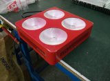 Product caldo 300W 450W 600W 1000W COB LED Grow Lights