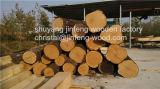ISO9001: 2008 참나무 베니어 MDF