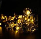 Gloria de mañana de la luz de la cadena de la energía solar 20-LED por el Nuevo-Año Lh-Ss18 de la boda de la Navidad