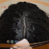 Afro-lockige Strahlen-Schwarz-Farben-volle Hand gebundene vordere Menschenhaar-Perücke