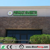 Signage de incandescência de venda quente de 2016 lojas da corrente de iluminação do verde do aço inoxidável