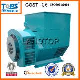 Generatore a tre fasi caldo di Bruthless