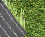 L'erba artificiale, erba sintetica, mette in mostra l'erba, pavimentazione del campo da giuoco