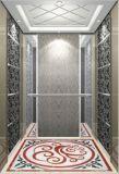 Lo specchio dell'elevatore dell'elevatore del passeggero ha inciso il sig. & il LMR Aksen Hl-X-018