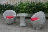 Mtc015余暇の屋外の藤の家具のコーヒーテーブル