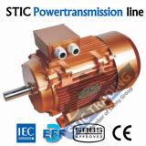 Мотор насоса чугуна высокой эффективности Ye2 IEC стандартный