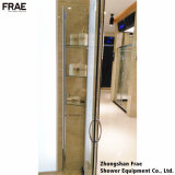 シャワーの緩和されたガラスの浴室/シャワー・カーテン/シャワーの小屋