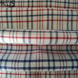 Baumwollpopelin-gesponnenes Garn gefärbtes Gewebe für Kleid-Hemd/Kleid Rls60-2po