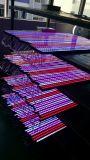 Heiße verkaufende wasserdichte LED dekorative Beleuchtung der netten Auslegung-