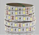 중국 LED 지구 빛 공급자 최고 질 방수 LEDs 5730 SMD 유연한 지구 빛 60 LEDs/M