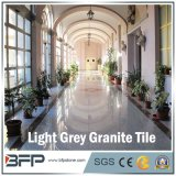 Gangsaw Light Grey Granite Slab for Countertops