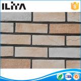 Mattonelle sottili classiche bianche del mattone, mattone della parete del rivestimento della parete (YLD-18029)