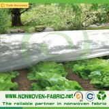 Tela não tecida estável UV para a proteção de colheita
