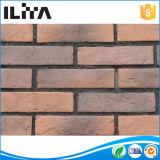 Mattone artificiale del rivestimento della parete di pietra della coltura, muffa, Wall Comitato (YLD-20004)
