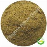 Alimentazione acida Multi-Amminica di supplemento della proteina