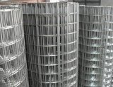 Alambre galvanizado de la tela metálica y fábrica destemplada negra del acoplamiento de alambre