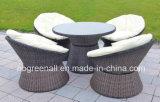 Rota al aire libre/muebles de mimbre del jardín del conjunto de café de Comfirtable