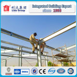 Taller de la estructura de acero de Dubai