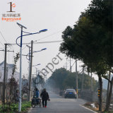 15W IP68 Ce RoHS Solar LED Street Light (dzs-001)