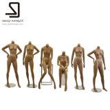 Pleins mannequins femelles de fuselage