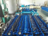 DIN/BS/ANSI Wafer Cast Iron Butterfly Valve mit Cer