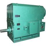 Yrkk専門のシリーズ産業高圧電動機