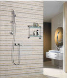 Steel inoxidável Wall Mounted Shower Set com Watermark Approval
