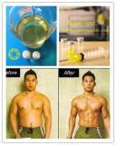 Testosterona esteroide inyectable Sustanon del polvo para el realce Sustanon 250 del músculo