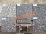 Creado en bulto de un rango estándar, pavimentadoras coloridas del terrazo