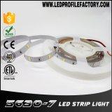 Nécessaire de lumière de bande du détecteur de mouvement de Ws2813 DEL DEL