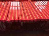 Luz del molde, fondo de etapa que mancha 36PCS X 10W RGB 3 en 1 arandela de la pared de la importación LED del LED
