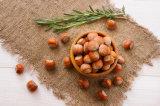 Grain normal de noisette de Turquie