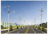 Lampada complementare chiara solare dell'indicatore luminoso del vento solare della lampada della generazione di energia eolica