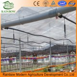 Sistema de riego por aspersión para riego de invernadero