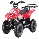 Chinês quente 110/125cc 4 Stoke Cheap Racing 4 Wheel ATV