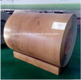 Coils에 있는 Coils Prepainted Galvanized Iron Steel에 있는 루핑 Sheet SGCC PPGI