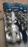 Válvula de puerta funcionada gusano del carbón del engranaje de API600 Class150 (Z41H-150LB-DN450)