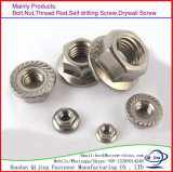 Classe Nuts 8 M6 en acier, M8, M10, M12 de bride Hex DIN 6923