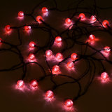 24 LED-Mehrfarbensolarim freienzeichenkette-Lichter