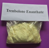 HPLC 보고를 가진 어두운 노란 처리되지 않는 스테로이드 분말 Trenbolone Enanthate