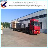 Remetente de frete sensível do transporte do mar dos bens de China a no mundo inteiro