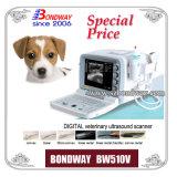 超音波のスキャンナー-獣医。 (獣医) Bw510V